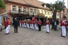 Parade der Bürgerwehr