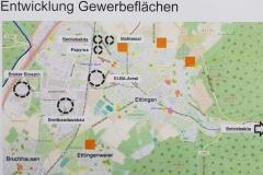 Entwicklung Gewerbegebietsflächen